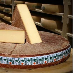Comté Extra Selection Fort Saint Antoine (250g)